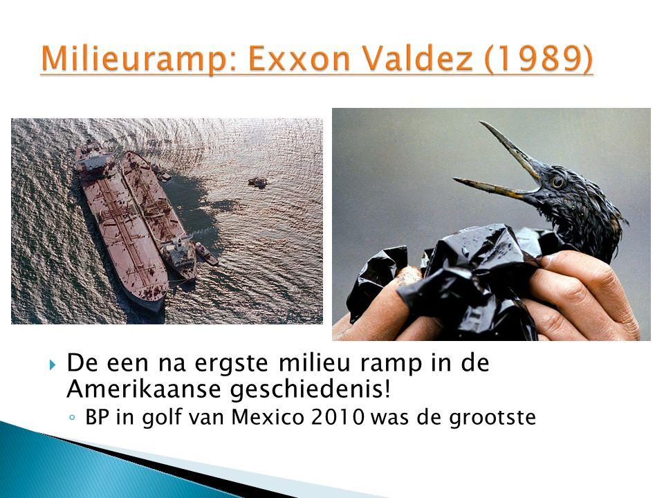 Milieuramp: Exxon Valdez (1989)