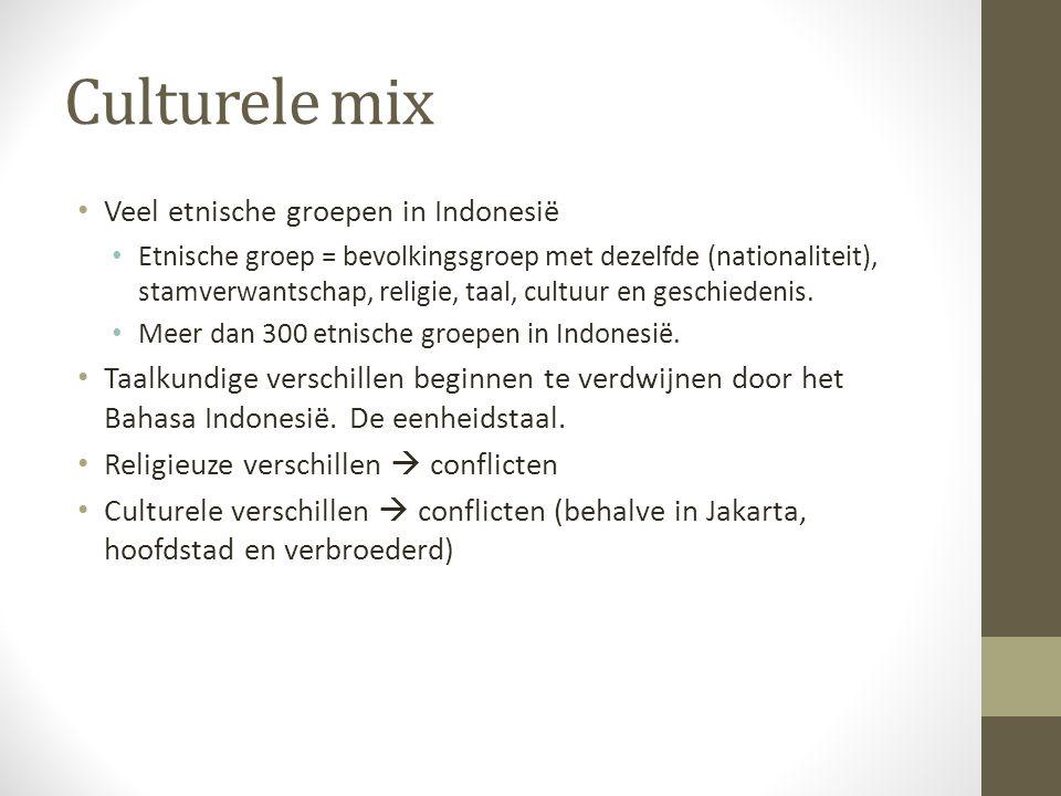 Culturele mix Veel etnische groepen in Indonesië