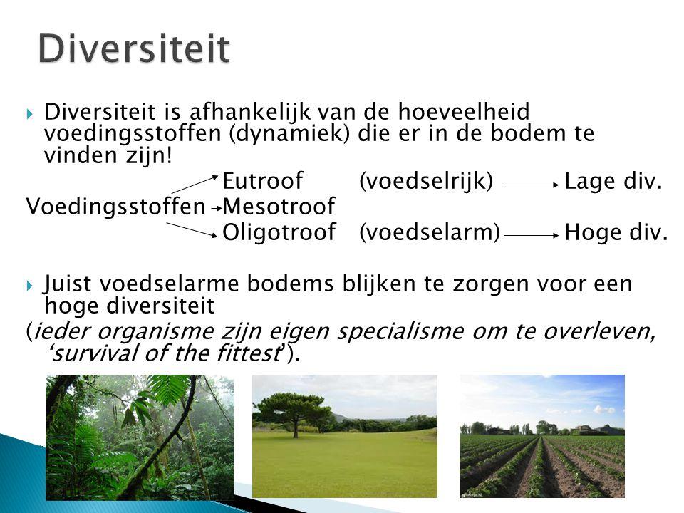 Diversiteit Diversiteit is afhankelijk van de hoeveelheid voedingsstoffen (dynamiek) die er in de bodem te vinden zijn!