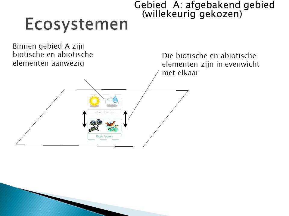 Ecosystemen Gebied A: afgebakend gebied (willekeurig gekozen)