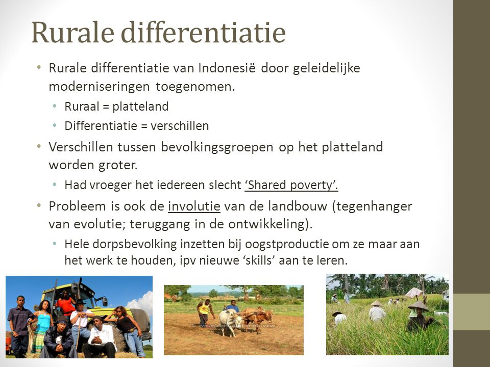 Rurale differentiatie