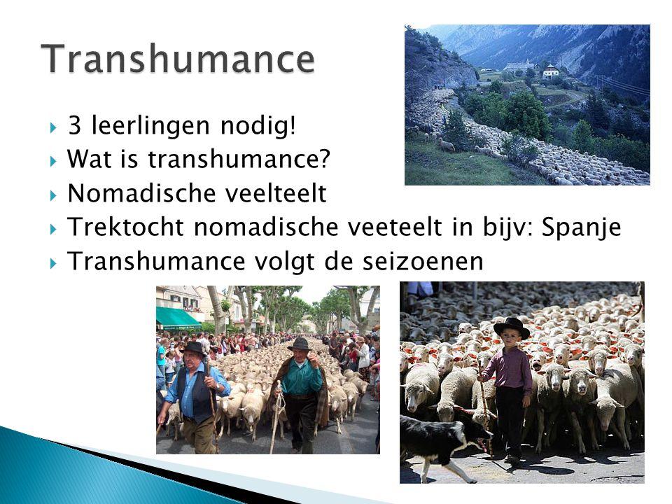 Transhumance 3 leerlingen nodig! Wat is transhumance