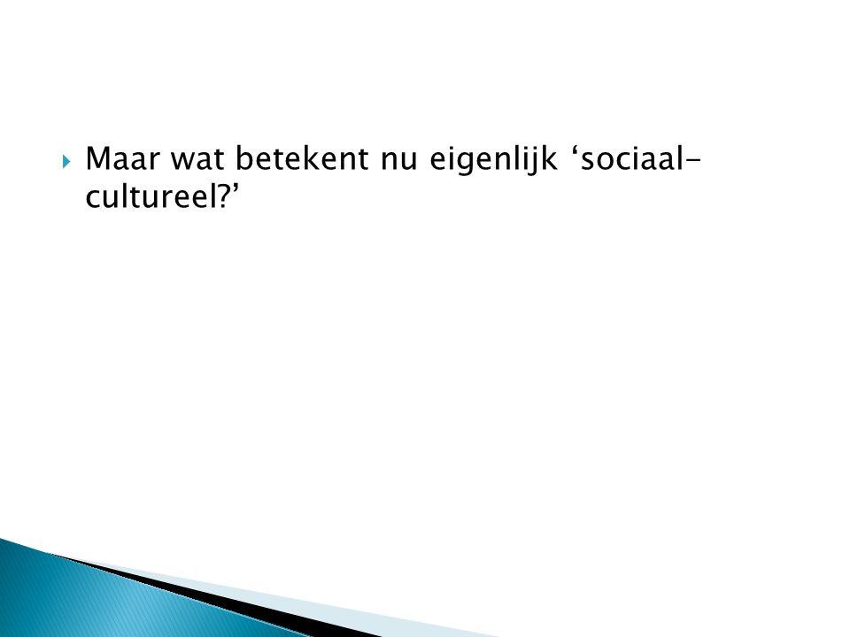 Maar wat betekent nu eigenlijk 'sociaal- cultureel '