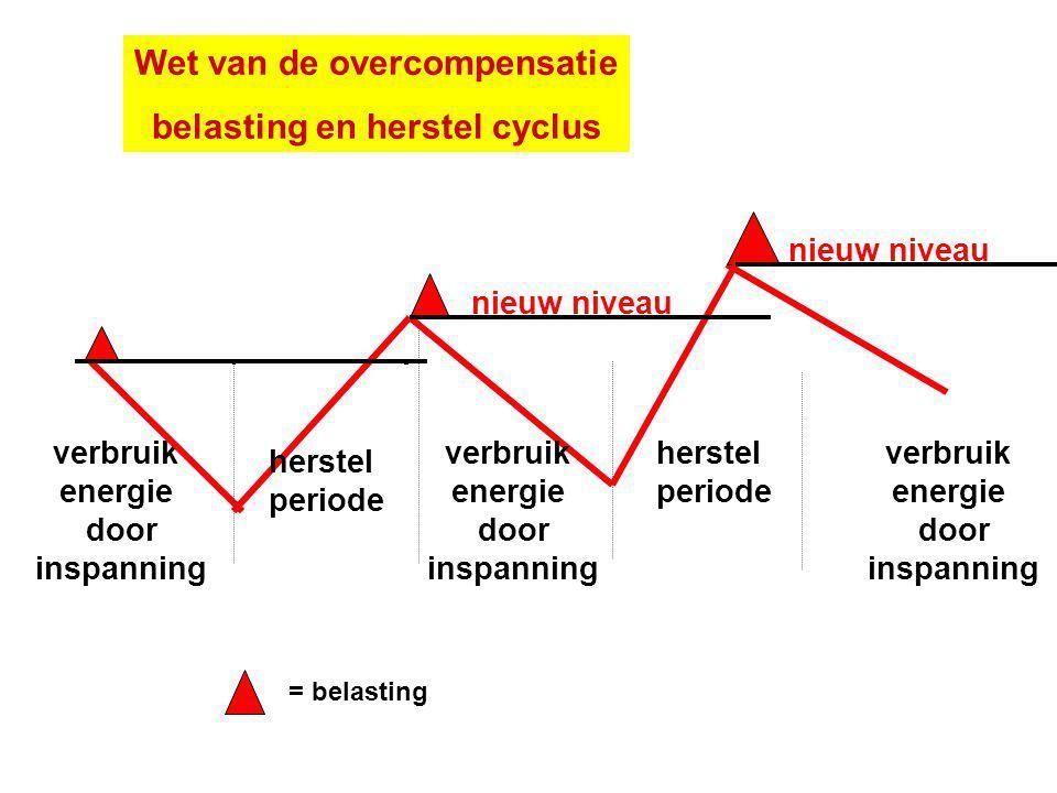Wet van de overcompensatie belasting en herstel cyclus