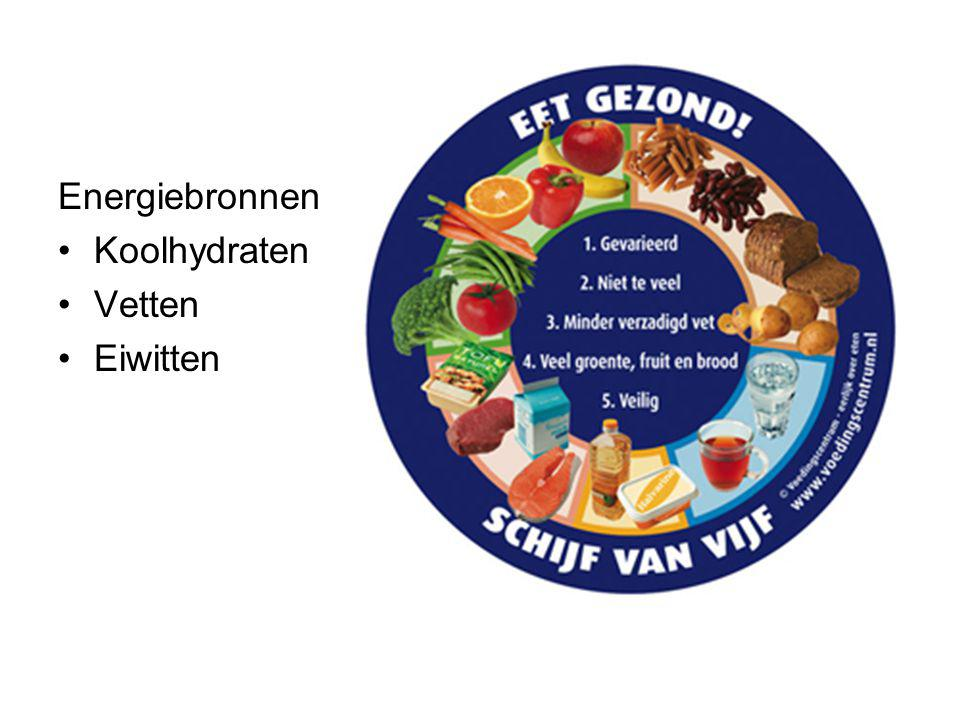 Energiebronnen Koolhydraten Vetten Eiwitten