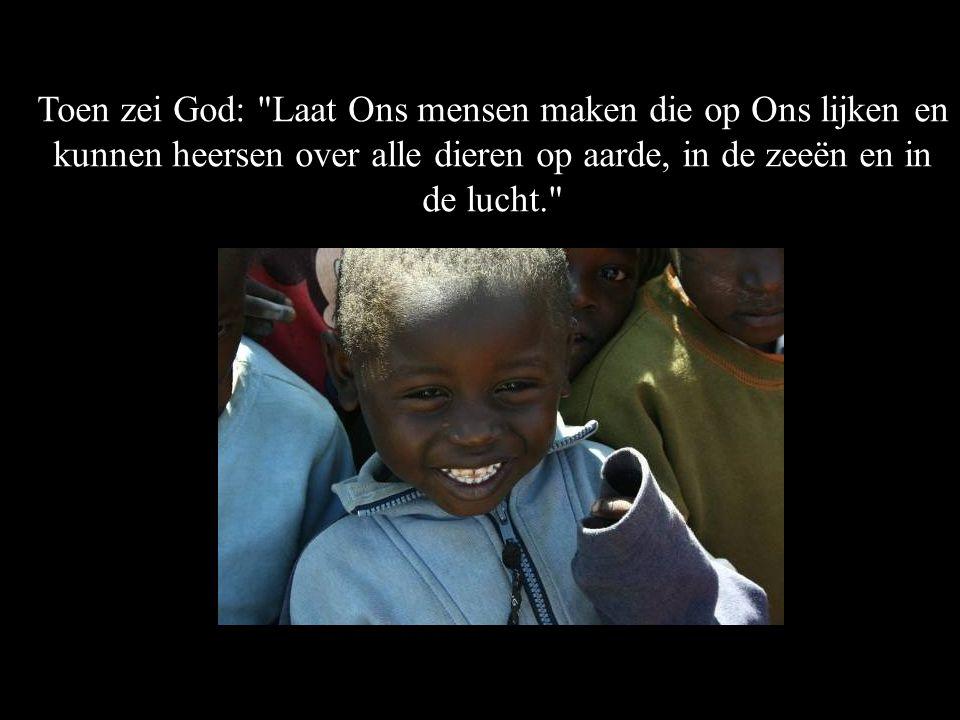 Toen zei God: Laat Ons mensen maken die op Ons lijken en kunnen heersen over alle dieren op aarde, in de zeeën en in de lucht.