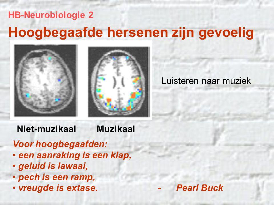 Hoogbegaafde hersenen zijn gevoelig