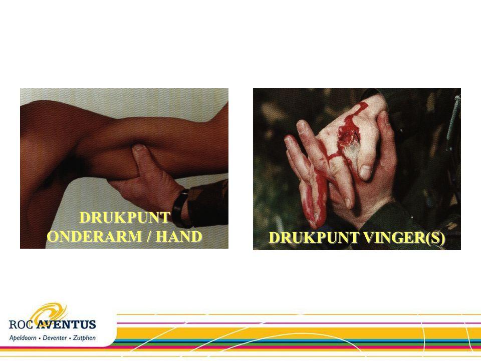 DRUKPUNT ONDERARM / HAND