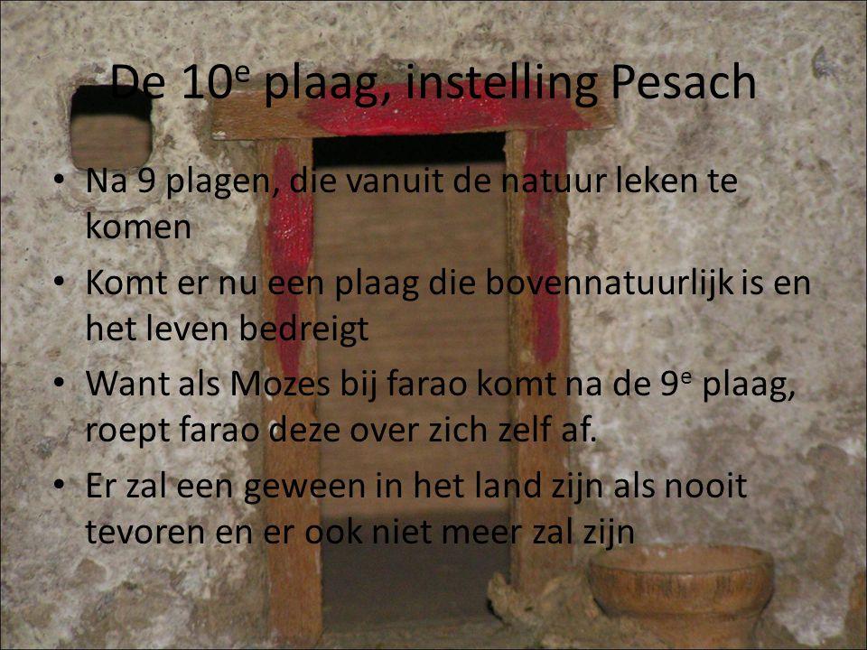 De 10e plaag, instelling Pesach