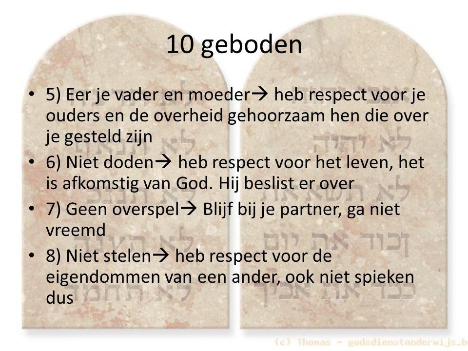 10 geboden 5) Eer je vader en moeder heb respect voor je ouders en de overheid gehoorzaam hen die over je gesteld zijn.