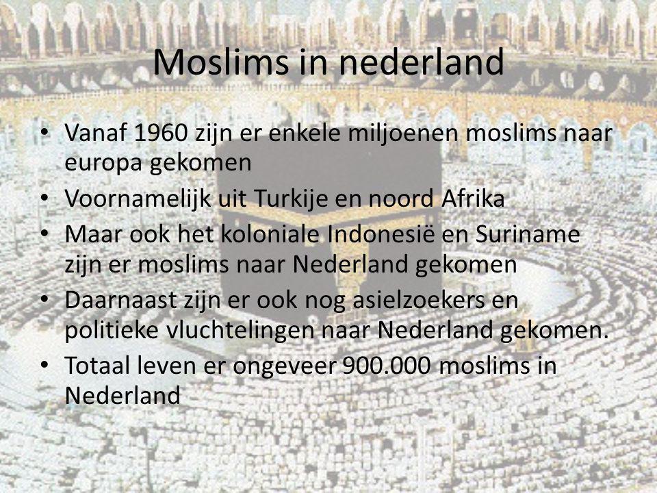 Moslims in nederland Vanaf 1960 zijn er enkele miljoenen moslims naar europa gekomen. Voornamelijk uit Turkije en noord Afrika.