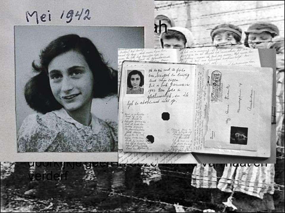 Shoah Uiteindelijk vinden 6.000.000 joden hun dood in kampen of door executie. Miljoenen anderen zijn levenslang getraumatiseerd.
