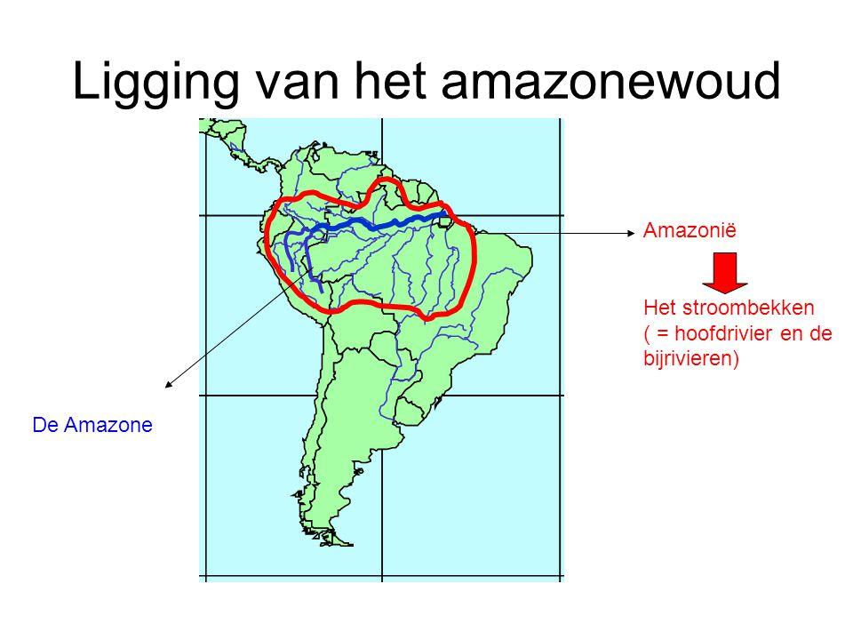 Ligging van het amazonewoud