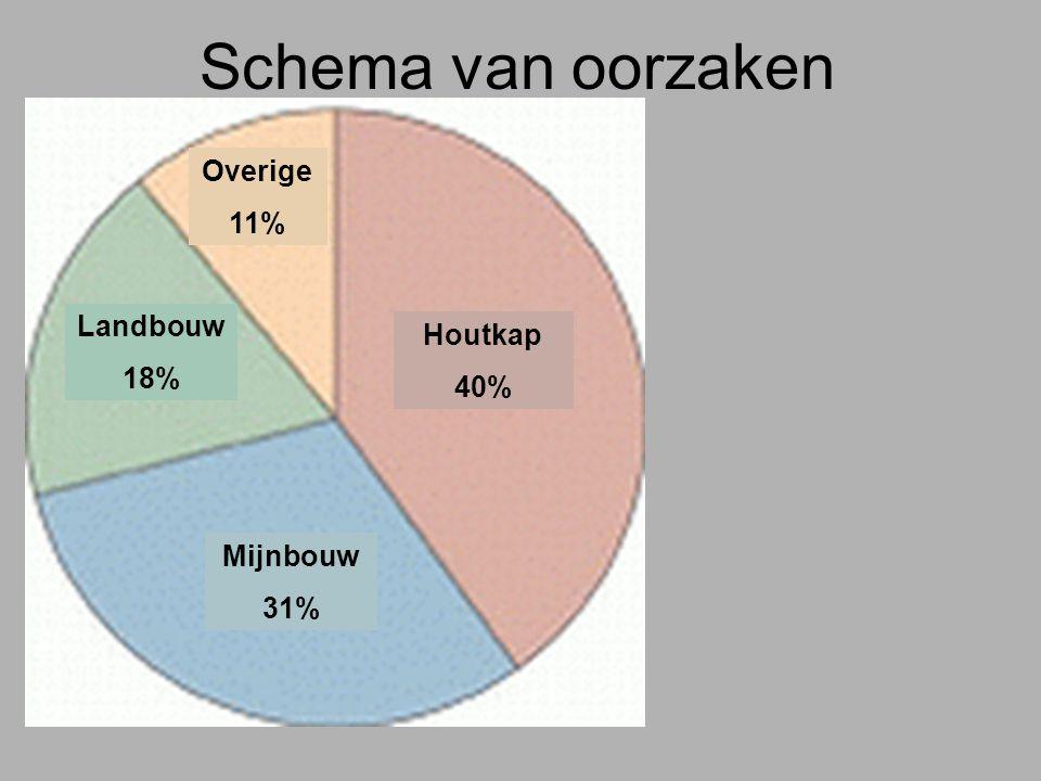 Schema van oorzaken Houtkap 40% Mijnbouw 31% Landbouw 18% Overige 11%