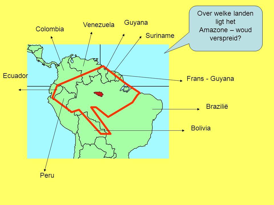 Over welke landen ligt het Amazone – woud verspreid