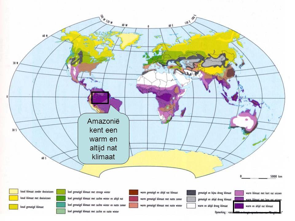 Amazonië kent een warm en altijd nat klimaat