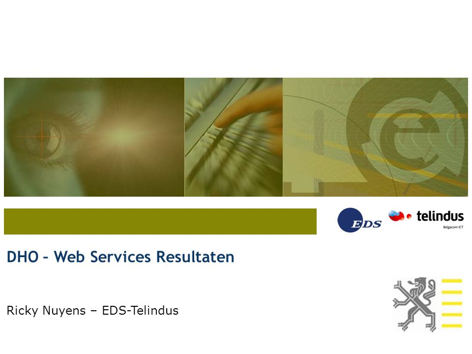 DHO – Web Services Resultaten