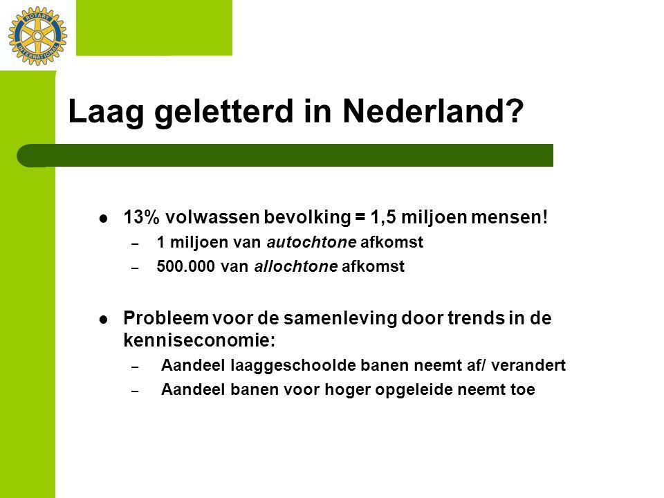 Laag geletterd in Nederland