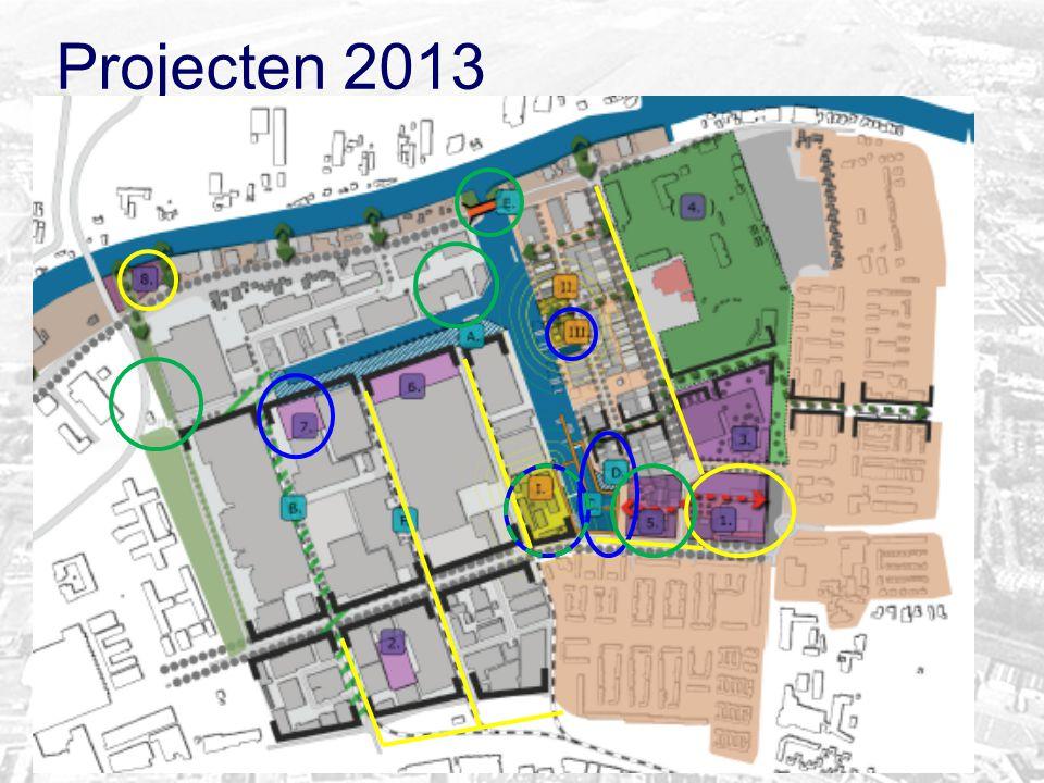 Projecten 2013