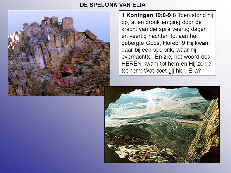 DE SPELONK VAN ELIA