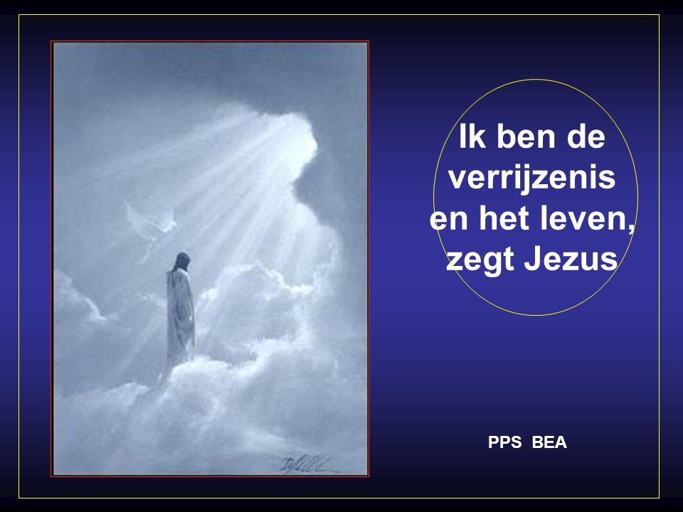 Ik ben de verrijzenis en het leven, zegt Jezus