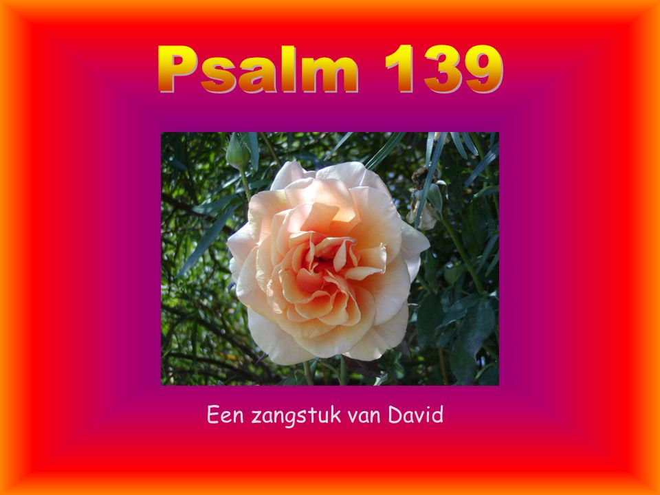 Psalm 139 Een zangstuk van David