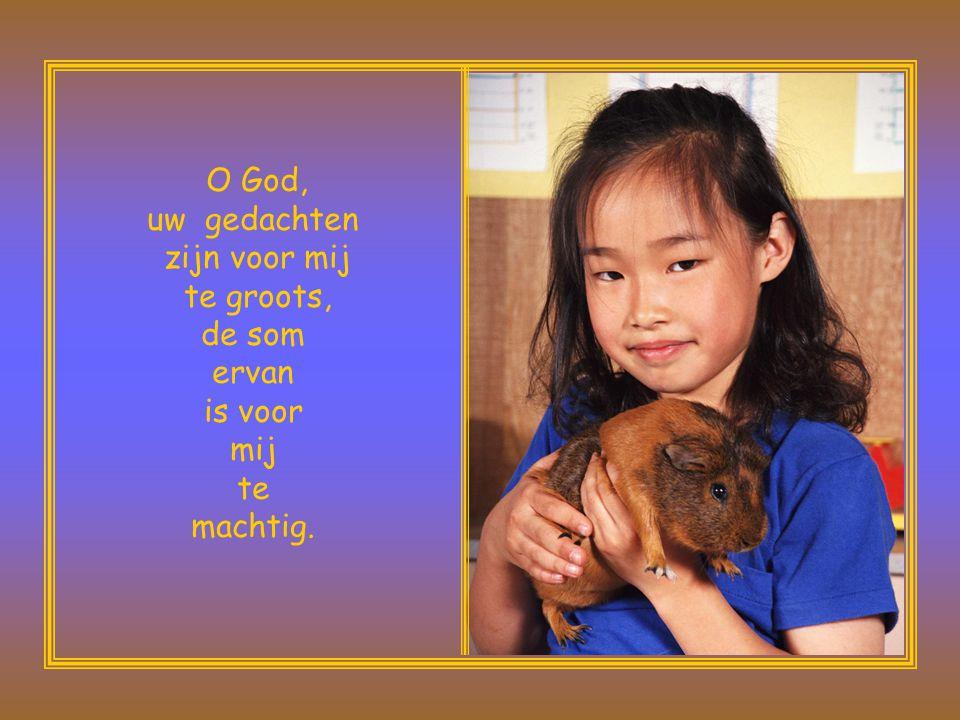 O God, uw gedachten. zijn voor mij. te groots, de som ervan. is voor mij.