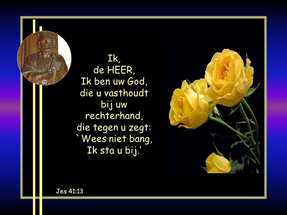 Ik, de HEER, Ik ben uw God, die u vasthoudt bij uw rechterhand, die tegen u zegt: `Wees niet bang, Ik sta u bij.'