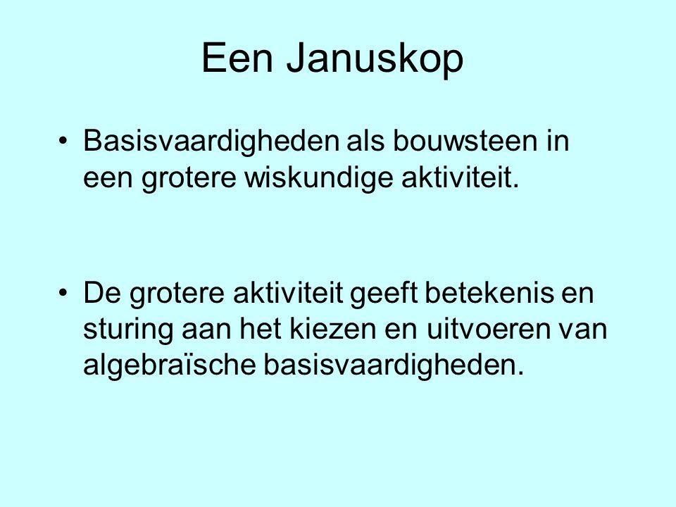 Een Januskop Basisvaardigheden als bouwsteen in een grotere wiskundige aktiviteit.