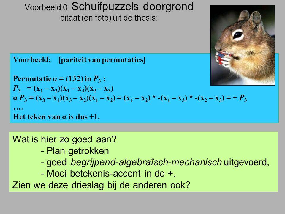 Voorbeeld 0: Schuifpuzzels doorgrond citaat (en foto) uit de thesis: