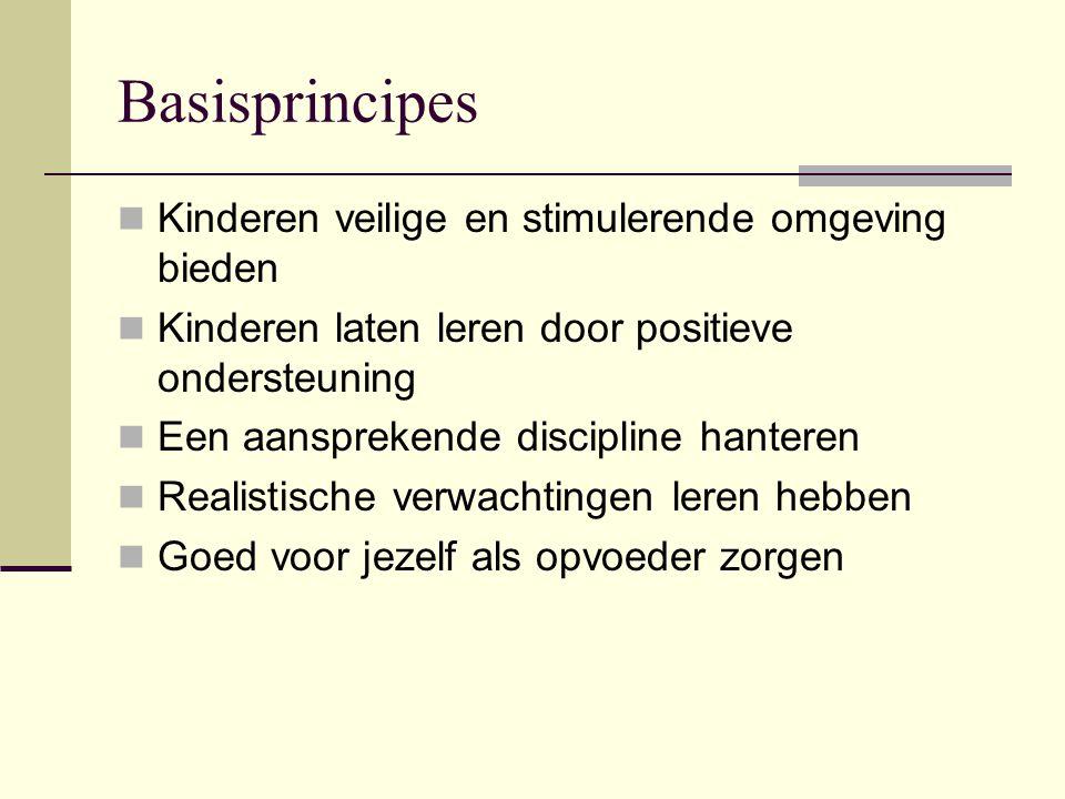 Basisprincipes Kinderen veilige en stimulerende omgeving bieden