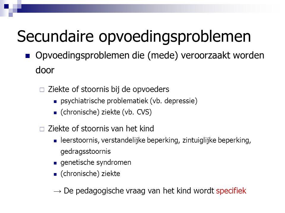 Secundaire opvoedingsproblemen