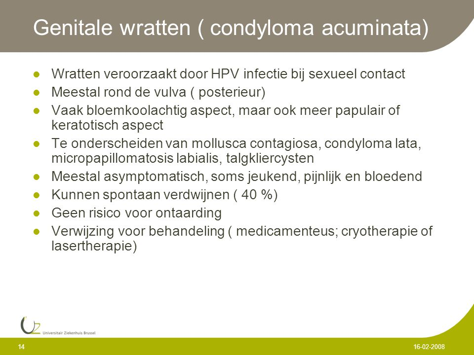 Genitale wratten ( condyloma acuminata)