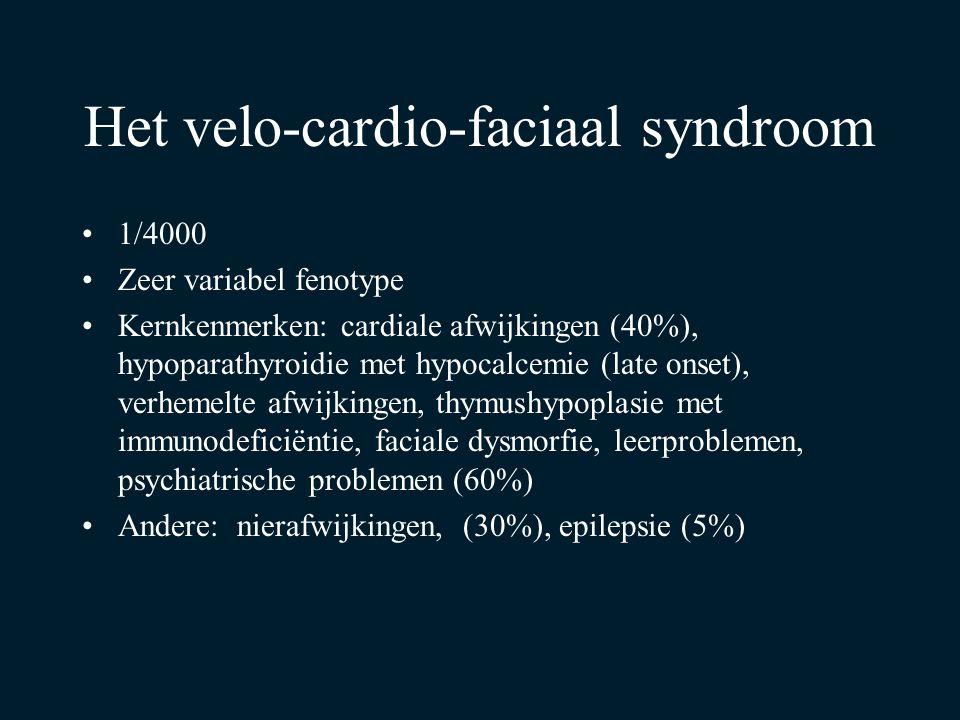 Het velo-cardio-faciaal syndroom