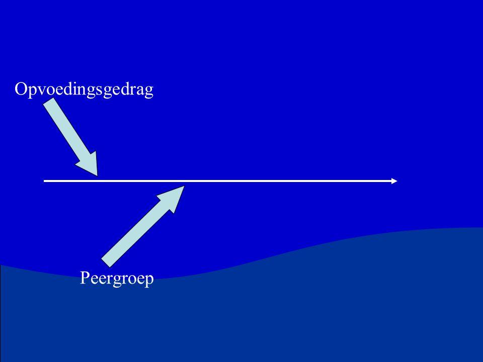Opvoedingsgedrag Peergroep