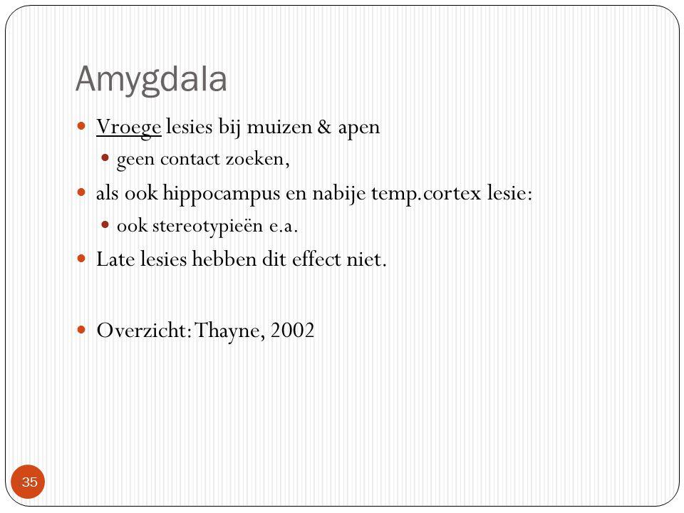Amygdala Vroege lesies bij muizen & apen