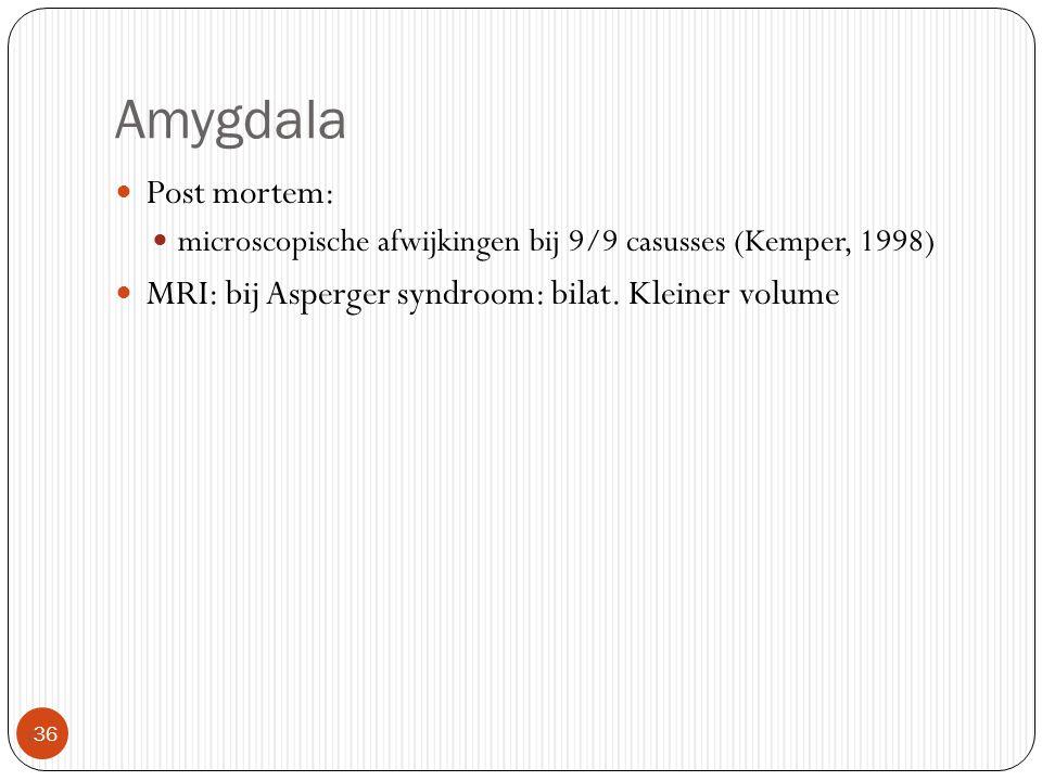 Amygdala Post mortem: microscopische afwijkingen bij 9/9 casusses (Kemper, 1998) MRI: bij Asperger syndroom: bilat.