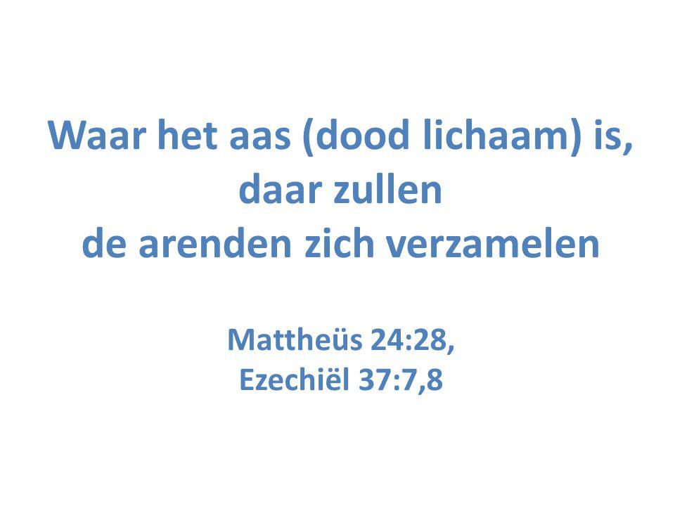 Waar het aas (dood lichaam) is, daar zullen de arenden zich verzamelen Mattheüs 24:28, Ezechiël 37:7,8