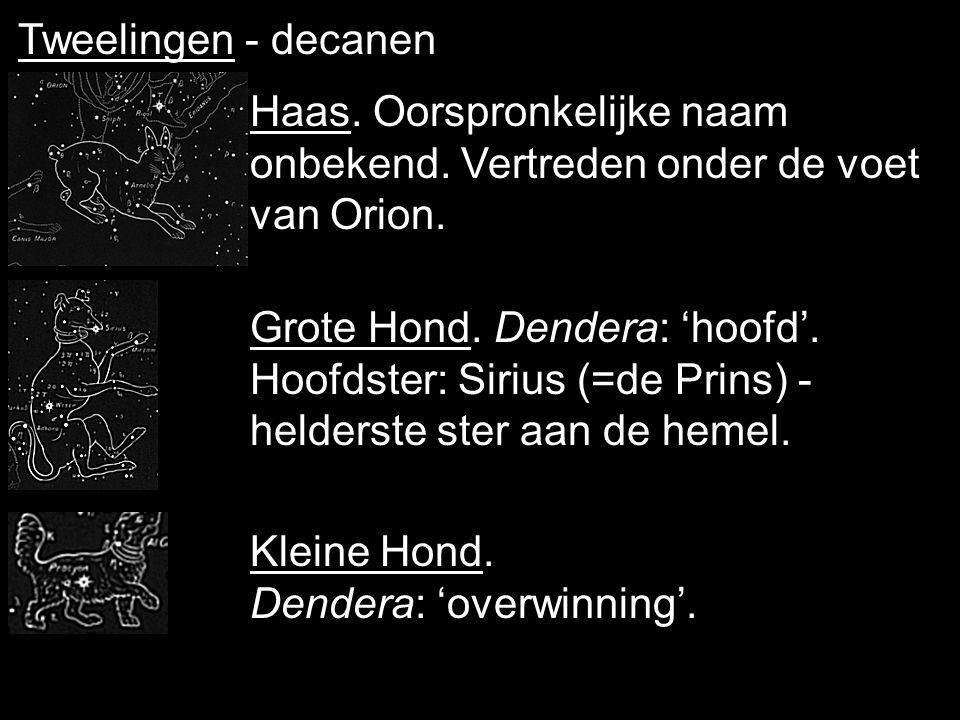 Tweelingen - decanen Haas. Oorspronkelijke naam onbekend. Vertreden onder de voet van Orion.