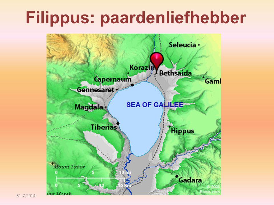 Filippus: paardenliefhebber