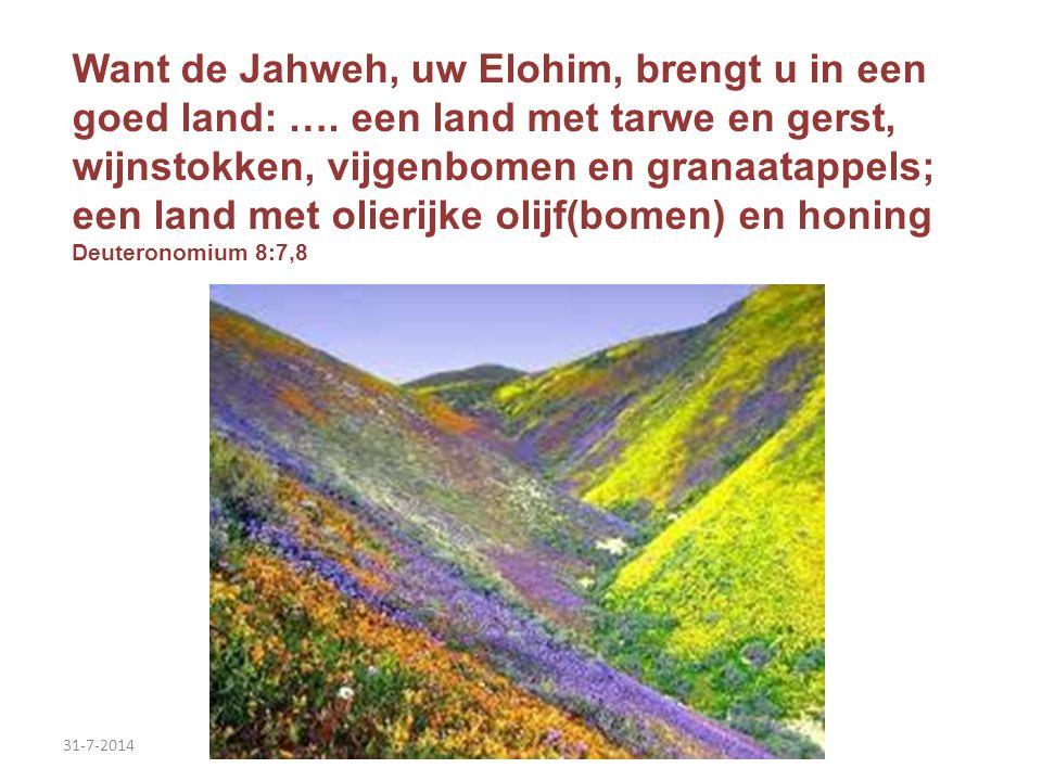 Want de Jahweh, uw Elohim, brengt u in een goed land: …