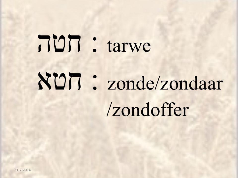חטא : zonde/zondaar /zondoffer