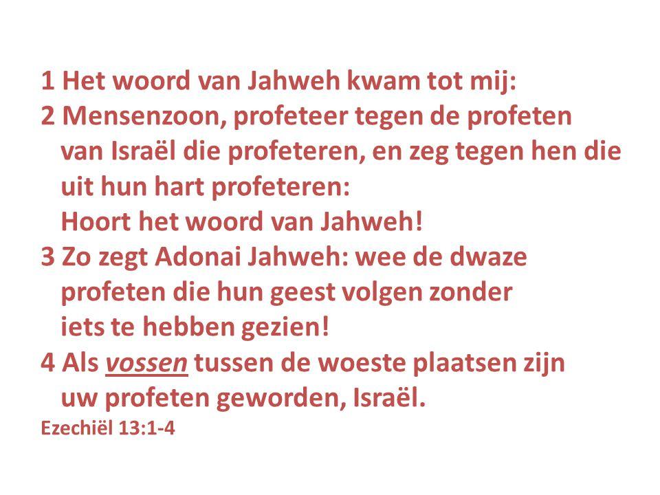 1 Het woord van Jahweh kwam tot mij: 2 Mensenzoon, profeteer tegen de profeten van Israël die profeteren, en zeg tegen hen die uit hun hart profeteren: Hoort het woord van Jahweh.