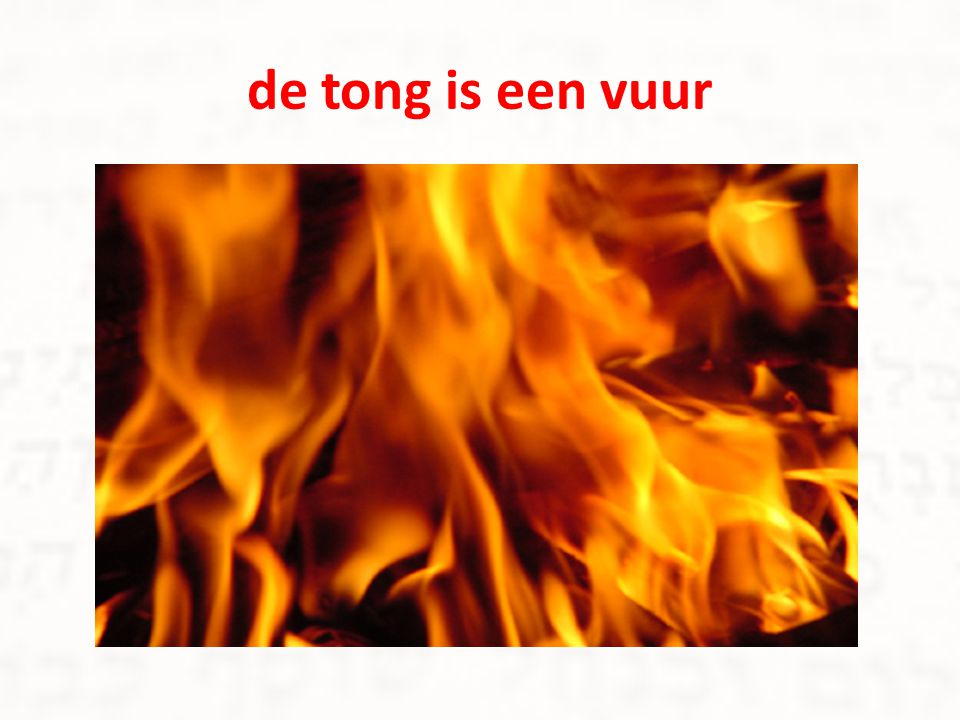 de tong is een vuur