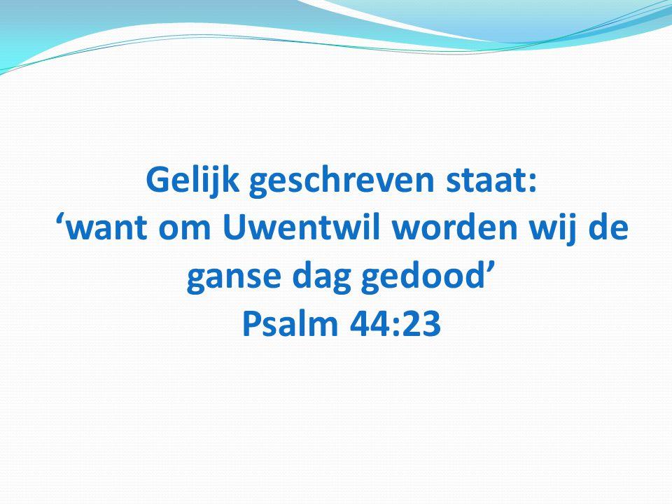 Gelijk geschreven staat: 'want om Uwentwil worden wij de ganse dag gedood' Psalm 44:23