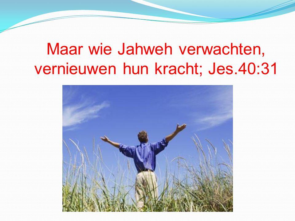 Maar wie Jahweh verwachten, vernieuwen hun kracht; Jes.40:31