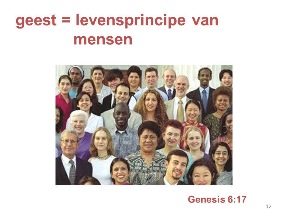 geest = levensprincipe van mensen