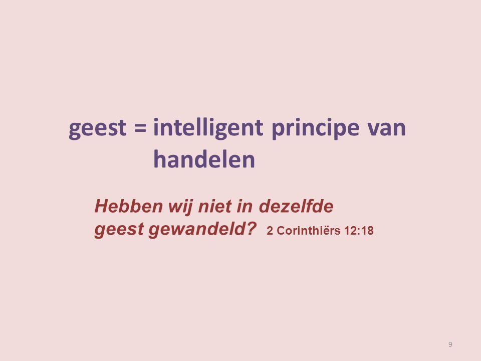 geest = intelligent principe van handelen