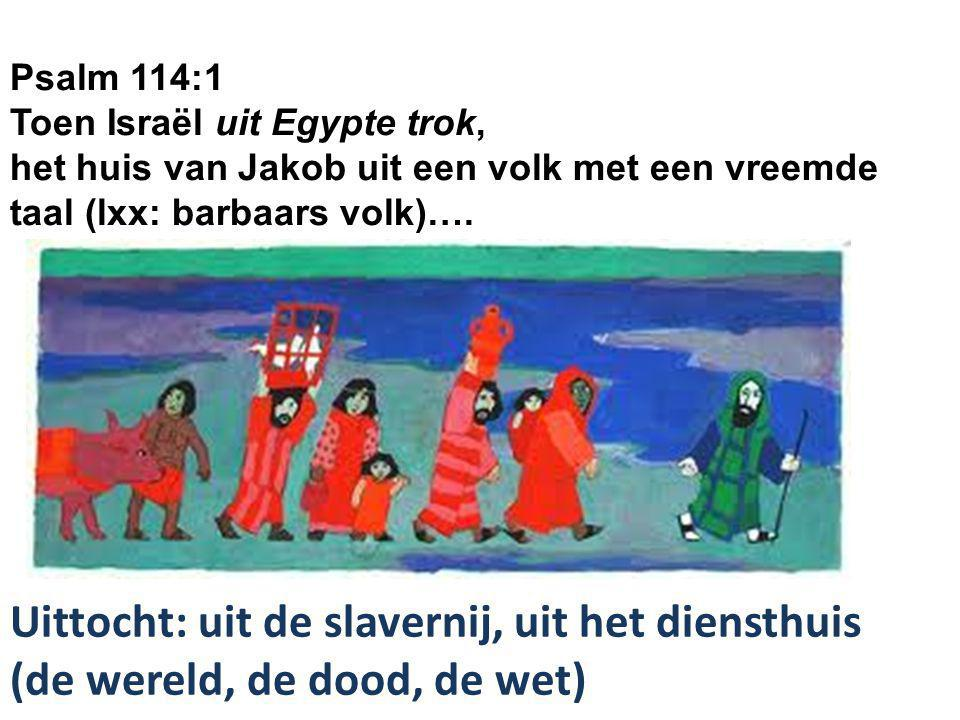 Psalm 114:1 Toen Israël uit Egypte trok,