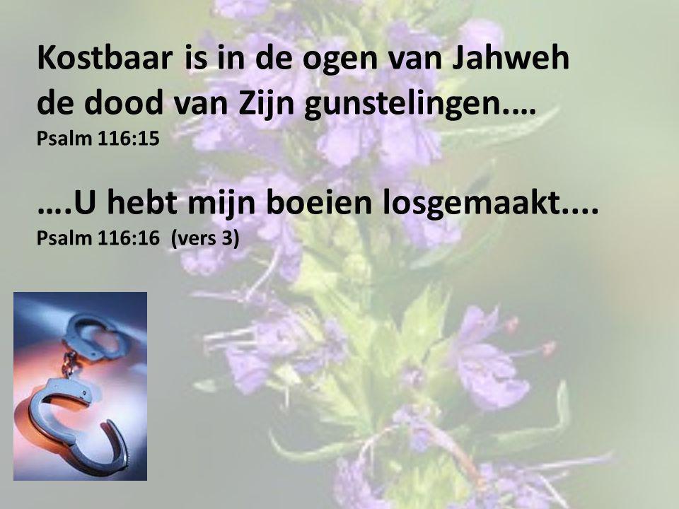 Kostbaar is in de ogen van Jahweh
